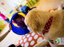 huvosvolgy_kutyaterapia_34.jpg