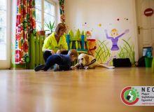huvosvolgy_kutyaterapia_47.jpg