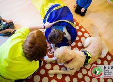 huvosvolgy_kutyaterapia_46.jpg